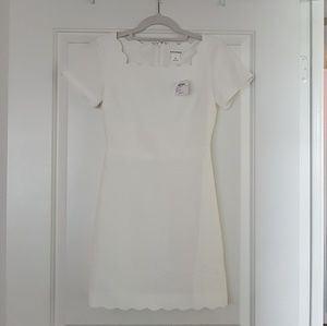 NWT Club Monaco White Dress Size 00